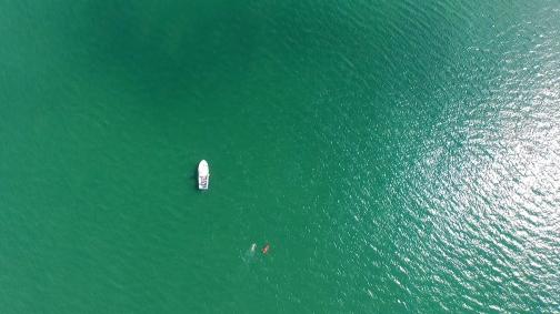Lambay Solo Swim